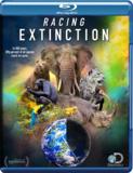 蓝光电影 BD25 BBC:竞速灭绝/竞相灭绝 2015